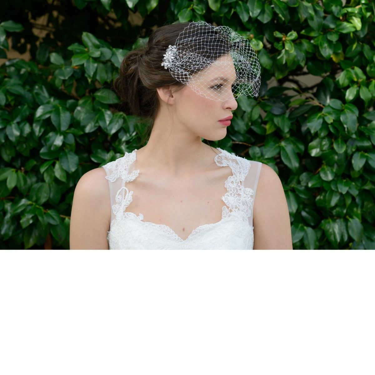 Ivory and co Crystal Birdcage Veil
