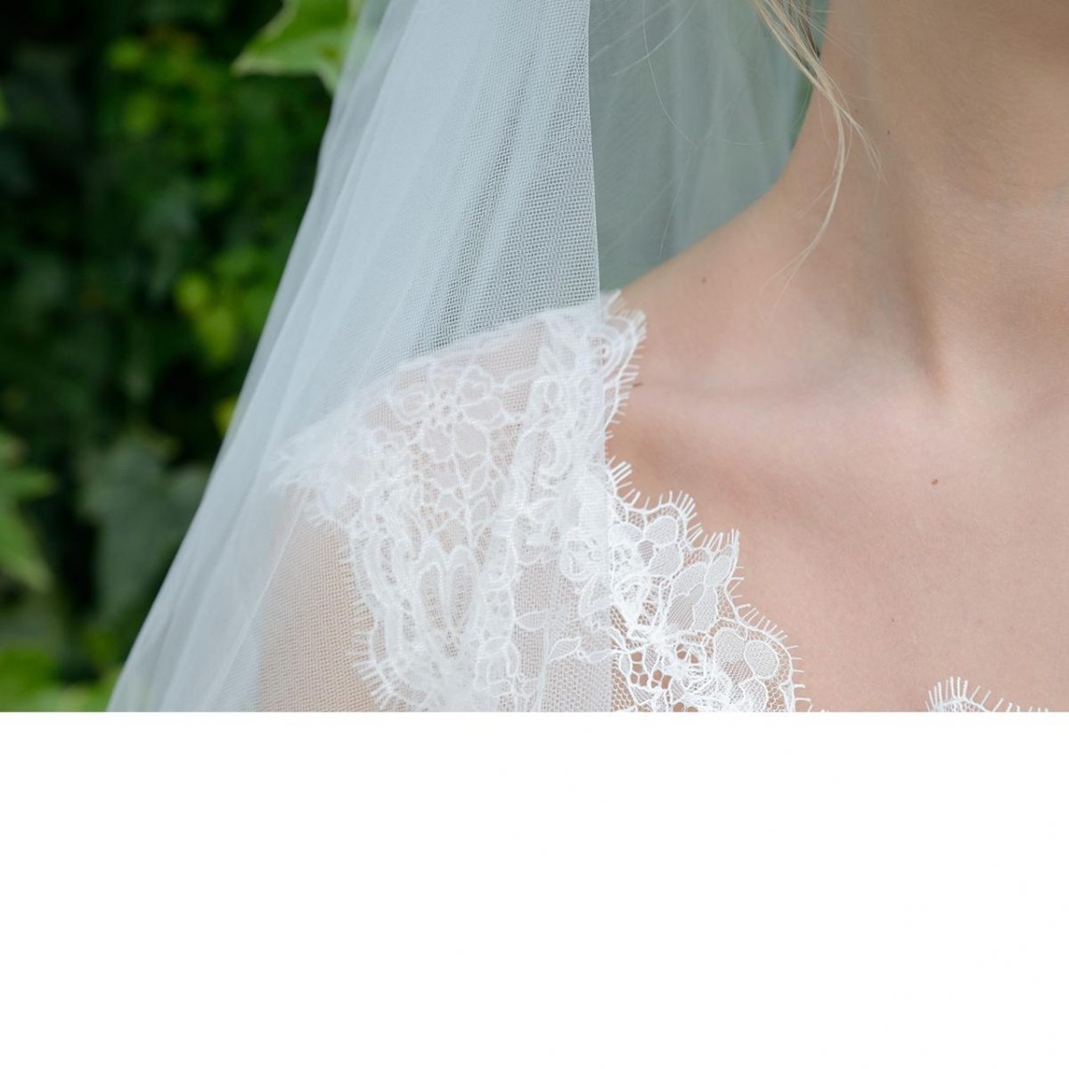 Ivory and Co New England Veil