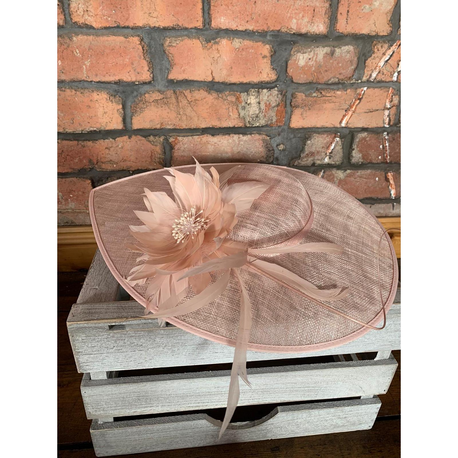 Fascinator/Hat Pale Pink 1